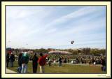 Kite_Festival4