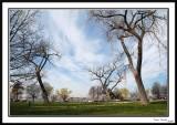 East Potomac Park 1