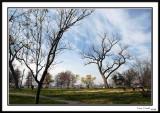 East Potomac Park 2