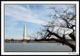 WashingtonMonument15