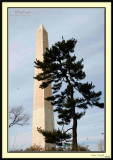 WashingtonMonument20