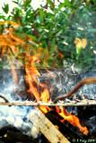 barbecue 4