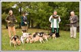My Half Farm Beagle Pack Blessing - 2007