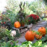 Fall - LaGuardia Corner Gardens