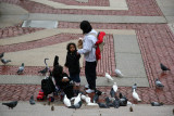 Feeding the Birds on the Low Library Steps