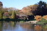 Pond & Stone Bridge