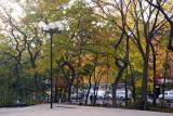 LaGuardia Place Time Landscape Garden NYC