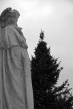 General Washington & Christmas Tree at the Arch