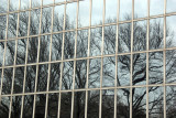 Reflections - Metropolitan Museum Windows