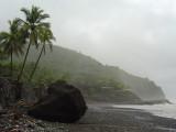 Gloomy coast