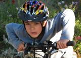 BikesMark.jpg