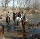 Hunting at Valley Green January 11th