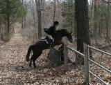 Hunting at Cedar Valley Farm, March 14th