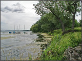 Lake Monona Shoreline Madison WI