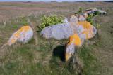 Allée couverte du Ribl datant de - 3000 ans