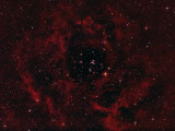 The Rosette Nebula - NGC 2244 and NGC 2237-9,46 in Monoceros