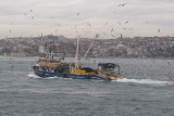 Istanbul december 2009 7126.jpg