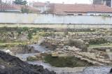Edirne december 2009 6045.jpg