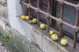 Edirne december 2009 6065.jpg