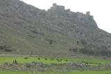 Snake Castle 08032008 2633.jpg