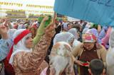 Kurdish Spring Festival mrt 2008 5451.jpg