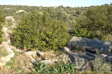 Kiz kalesi near Silifke mrt 2008 3856.jpg