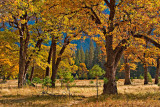 Autumn in the Valley.jpg