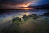 Laguna Beach -16