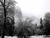February in Yosemite