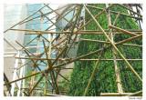 Echafaudage bambous Bangkok