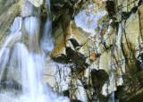 Light, Water, Rock