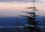 Rainier Sunset from Olympics