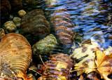 Fall Creek 3