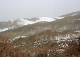Utah Mountains in May