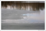 The thaw (4)