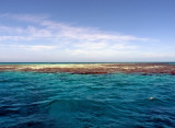 Belize 2010 Blackbird Oceanic Field Station,  Blackbird Caye, Turneffe Atoll