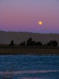 January  Moon.jpg