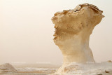 The White Desert - The Western Desert of Egypt