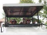 Getting ready to safari