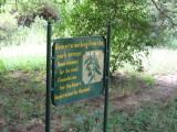 Manyara wisdom