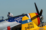 WARBIRDS AND WINGS
