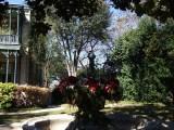 Groos House Fountain - 1880