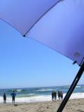 NAC  Goes Camping At Manresa Beach - 5/29/10