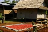 Tat Lo, southern Laos