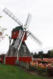Windmill, Holland, Michigan