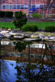 Reflection in the pond, Penn State University