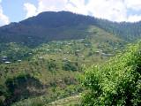 Near Bagh