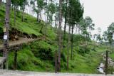 Link road