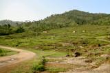 Changpur