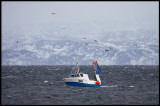 Hard weather with small fishingvessel